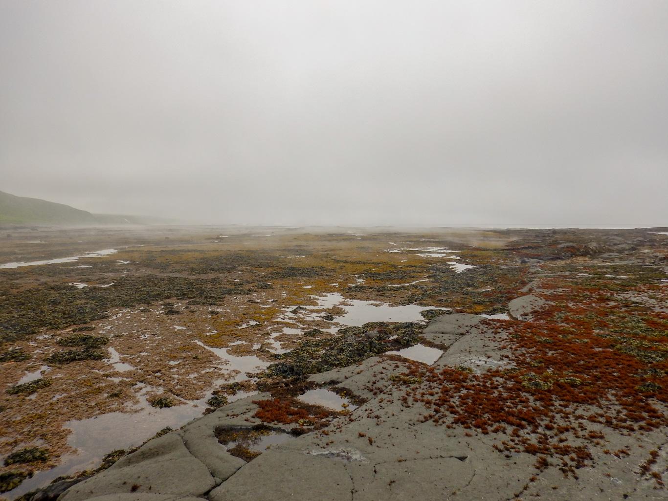 Парамушир отлив в Охотском море