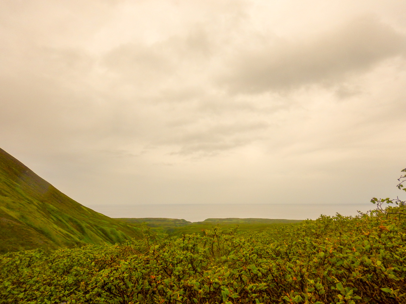остров Парамушир. Охотское море